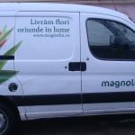 colantare auto magnolia.ro 2